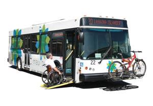 Maui Public Bus